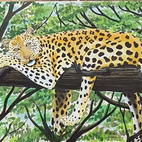 resting leopard, 32 x 25 inch, atanu chattopadhaya,paintings,wildlife paintings,nature paintings,paintings for living room,paintings for office,paintings for hotel,cloth,acrylic color,32x25inch,GAL0641214808Nature,environment,Beauty,scenery,greenery