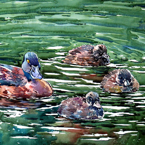 the family, 21 x 15 inch, raji p,paintings,wildlife paintings,landscape paintings,nature paintings,love paintings,baby paintings,children paintings,paintings for dining room,paintings for living room,paintings for bedroom,paintings for office,paintings for kids room,paintings for hotel,paintings for school,paintings for hospital,canson paper,watercolor,21x15inch,GAL059014936Nature,environment,Beauty,scenery,greenery
