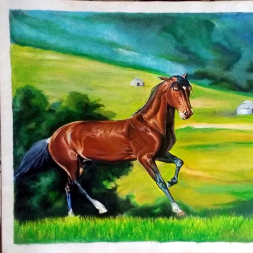 the running horse, 24 x 18 inch, shubham gawande,paintings,wildlife paintings,landscape paintings,animal paintings,horse paintings,paintings for dining room,paintings for living room,paintings for hotel,paintings for dining room,paintings for living room,paintings for hotel,ivory sheet,acrylic color,poster color,24x18inch,GAL0661615082