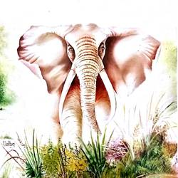 angry african elephant, 36 x 36 inch, madhuri yadav,paintings,elephant paintings,paintings for office,paintings for hotel,paintings for office,paintings for hotel,canvas,oil,36x36inch,GAL0663915127