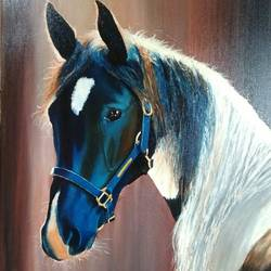 blue horse, 24 x 36 inch, ravi pillay,paintings,wildlife paintings,horse paintings,paintings for living room,paintings for office,paintings for hotel,paintings for living room,paintings for office,paintings for hotel,canvas,oil,24x36inch,GAL0668215200