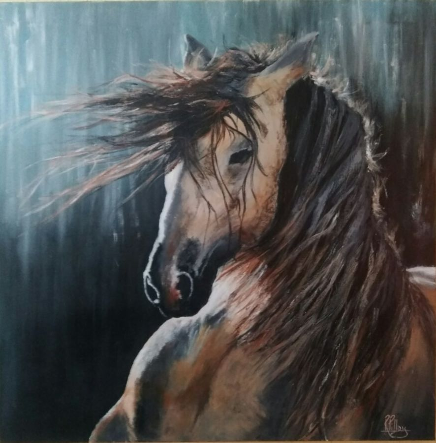 stallion, 30 x 30 inch, ravi pillay,paintings,wildlife paintings,horse paintings,paintings for living room,paintings for office,paintings for hotel,paintings for living room,paintings for office,paintings for hotel,canvas,acrylic color,30x30inch,GAL0668215202