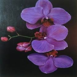 orchid, 24 x 36 inch, ravi pillay,paintings,flower paintings,paintings for living room,paintings for office,paintings for hotel,paintings for school,paintings for hospital,paintings for living room,paintings for office,paintings for hotel,paintings for school,paintings for hospital,canvas,acrylic color,24x36inch,GAL0668215205