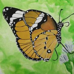 butterfly, 12 x 9 inch, vidya kamble,paintings,nature paintings,realism paintings,paintings for living room,paintings for bedroom,paintings for hotel,paintings for kitchen,paintings for living room,drawing paper,watercolor,12x9inch,GAL0340515261Nature,environment,Beauty,scenery,greenery