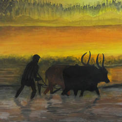 kerala farmer and his bulls, 17 x 11 inch, rijoy  emmanuel,paintings,landscape paintings,nature paintings,animal paintings,paper,watercolor,17x11inch,GAL0643115331Nature,environment,Beauty,scenery,greenery