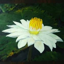 white lotus on canvas, 15 x 12 inch, neha inaskar,paintings,flower paintings,paintings for dining room,paintings for living room,paintings for office,paintings for hotel,canvas,acrylic color,15x12inch,GAL0674715379