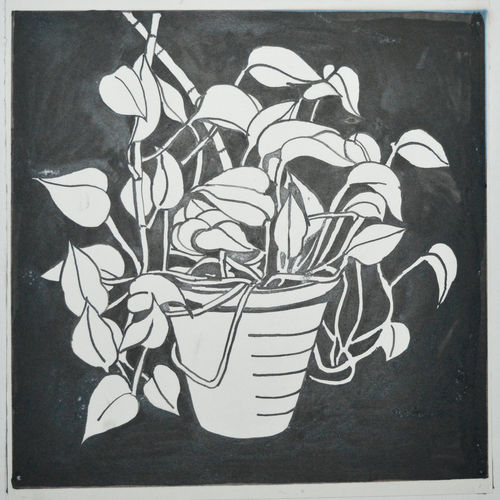 money plant, 12 x 12 inch, parvez ahmad,paintings,nature paintings,paintings for dining room,paintings for living room,paintings for bedroom,paintings for office,paintings for kids room,paintings for hotel,paintings for kitchen,paintings for school,paintings for hospital,paintings for dining room,paintings for living room,paintings for bedroom,paintings for office,paintings for kids room,paintings for hotel,paintings for kitchen,paintings for school,paintings for hospital,ivory sheet,ink color,12x12inch,GAL037915503Nature,environment,Beauty,scenery,greenery