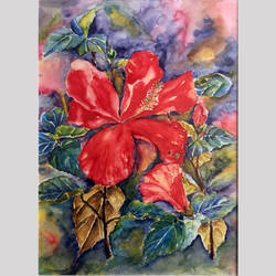 watercolor artwork - hibiscus flower, 11 x 15 inch, srilekha l,paintings,flower paintings,nature paintings,paintings for dining room,paintings for living room,paintings for bedroom,paintings for office,paintings for hotel,paintings for kitchen,paintings for school,paintings for hospital,paintings for dining room,paintings for living room,paintings for bedroom,paintings for office,paintings for hotel,paintings for kitchen,paintings for school,paintings for hospital,renaissance watercolor paper,watercolor,11x15inch,GAL0693715653Nature,environment,Beauty,scenery,greenery