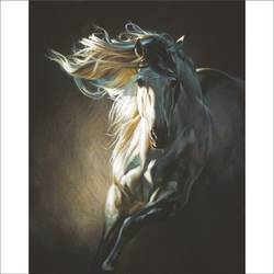 wild horse, 18 x 24 inch, augustine devotta,horse paintings,paintings for living room,paintings for office,paintings for hotel,canvas,oil,18x24inch,GAL0695415725