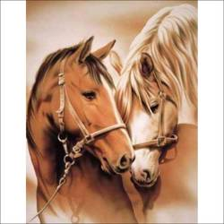 horses portrait, 18 x 24 inch, augustine devotta,paintings for living room,paintings for hotel,paintings for dining room,horse paintings,canvas,oil,18x24inch,GAL0695415726