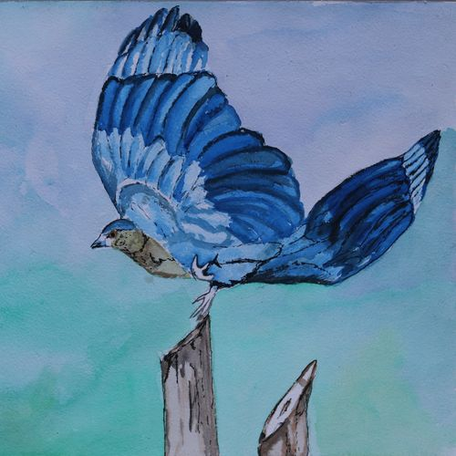 the indian roller, 14 x 11 inch, soma pradhan,paintings,wildlife paintings,paintings for hotel,paintings for school,paintings for hospital,paintings for hotel,paintings for school,paintings for hospital,brustro watercolor paper,watercolor,14x11inch,GAL064515772