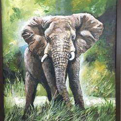 the mighty elephant, 16 x 20 inch, pickie arts,wildlife paintings,realism paintings,animal paintings,paintings for dining room,paintings for living room,paintings for office,paintings for kids room,paintings for hotel,paintings for school,paintings for hospital,paintings for dining room,paintings for living room,paintings for office,paintings for kids room,paintings for hotel,paintings for school,paintings for hospital,canvas,acrylic color,16x20inch,GAL0708815885