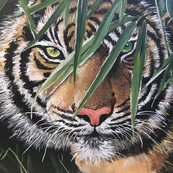 intense gaze, 30 x 20 inch, pickie arts,wildlife paintings,realism paintings,animal paintings,paintings for dining room,paintings for living room,paintings for bedroom,paintings for office,paintings for bathroom,paintings for kids room,paintings for hotel,paintings for school,paintings for hospital,canvas,acrylic color,30x20inch,tiger,forest,king,GAL0708815887,tiger,national animal,trees