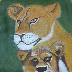 lioness, 14 x 22 inch, gaurab  bose,paintings,wildlife paintings,paintings for dining room,paintings for living room,paintings for bedroom,paintings for office,paintings for hotel,paintings for school,paintings for hospital,canvas,acrylic color,14x22inch,GAL0655015910