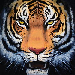 tiger, 10 x 12 inch, chinmay bahulekar,paintings,wildlife paintings,portrait paintings,animal paintings,realistic paintings,paintings for dining room,paintings for living room,paintings for office,paintings for hotel,paintings for school,canvas,acrylic color,10x12inch,GAL0720416043