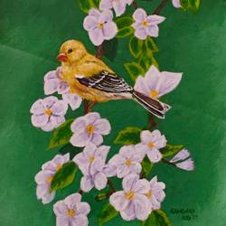 bird on a branch, 16 x 20 inch, kangana vohra,paintings,wildlife paintings,flower paintings,nature paintings,paintings for dining room,paintings for living room,paintings for bedroom,paintings for office,paintings for kids room,paintings for hotel,paintings for kitchen,paintings for school,paintings for hospital,canvas,acrylic color,16x20inch,GAL0725816150Nature,environment,Beauty,scenery,greenery