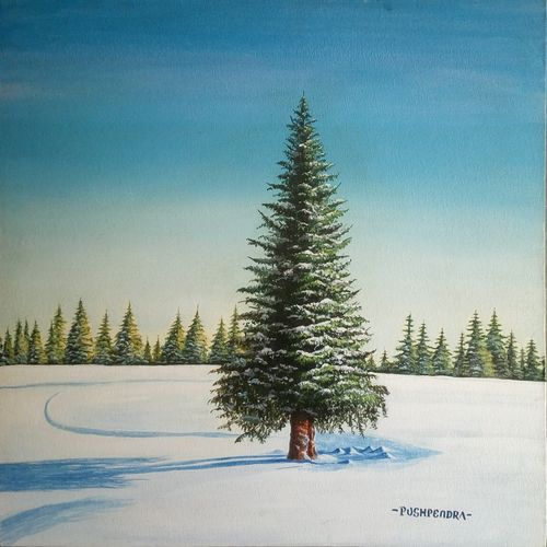 white beauty, 16 x 16 inch, pushpendra singh mandloi,paintings,landscape paintings,nature paintings,realistic paintings,paintings for dining room,paintings for bedroom,paintings for office,paintings for hotel,canvas board,acrylic color,oil,16x16inch,GAL0726216375Nature,environment,Beauty,scenery,greenery