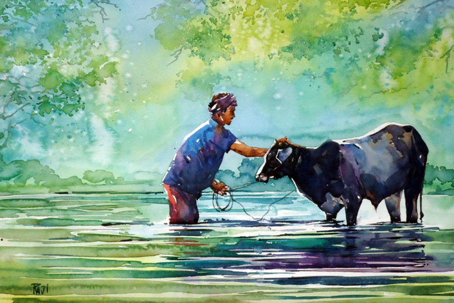 morning bath 21 x 15 inch by raji p,21x15inch,nature,farmer,cow,river,GAL059016422Nature,environment,Beauty,scenery,greenery,cow,bathing,man,washing