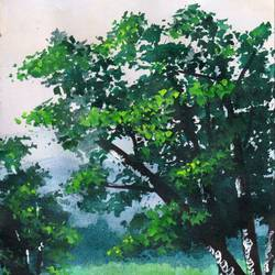 landscape2, 5 x 10 inch, pushpendra singh mandloi,paintings,landscape paintings,nature paintings,paper,acrylic color,5x10inch,GAL0726216679Nature,environment,Beauty,scenery,greenery