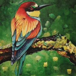 colourful bird, 34 x 24 inch, devika sathyavelu,paintings,paintings for living room,paintings for living room,nature paintings,paintings for office,paintings for hotel,canvas,acrylic color,34x24inch,GAL0755116726Nature,environment,Beauty,scenery,greenery