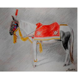 horse, 10 x 13 inch, pronati halder,paintings,animal paintings,drawing paper,pencil color,10x13inch,GAL0375716974