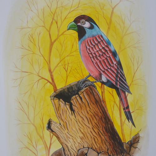 bird painting 45, 9 x 12 inch, santosh patil,paintings,nature paintings,animal paintings,love paintings,paintings for dining room,paintings for living room,paintings for bedroom,paintings for office,paintings for kids room,paintings for hotel,paintings for kitchen,paintings for school,paintings for hospital,paintings for dining room,paintings for living room,paintings for bedroom,paintings for office,paintings for kids room,paintings for hotel,paintings for kitchen,paintings for school,paintings for hospital,drawing paper,poster color,9x12inch,GAL0178116998Nature,environment,Beauty,scenery,greenery