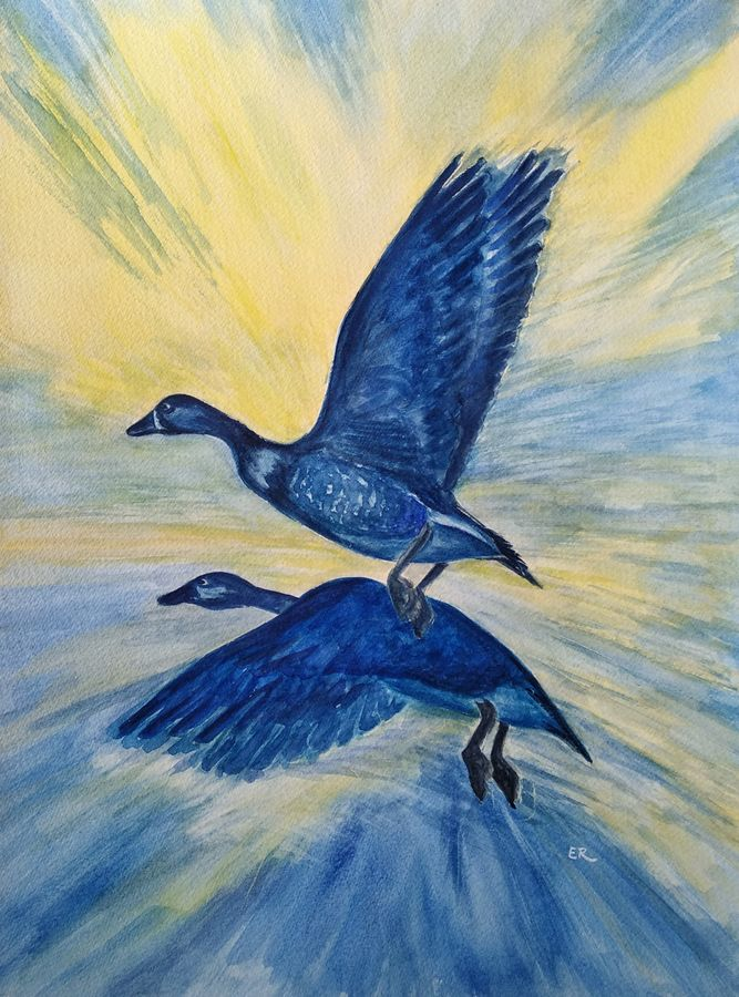 birds in flight, 11 x 15 inch, ram mohan e,paintings,wildlife paintings,nature paintings,animal paintings,paintings for living room,paintings for office,paintings for kids room,paintings for hotel,paintings for school,fabriano sheet,watercolor,11x15inch,GAL069717058Nature,environment,Beauty,scenery,greenery