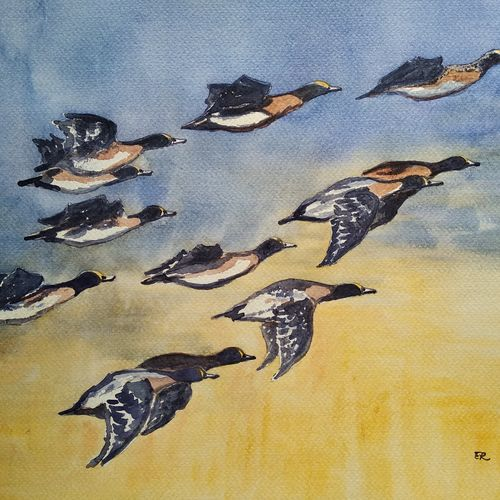 birds in a flight, 15 x 11 inch, ram mohan e,paintings,nature paintings,animal paintings,paintings for living room,paintings for office,paintings for kids room,paintings for hotel,paintings for school,fabriano sheet,watercolor,15x11inch,GAL069717059Nature,environment,Beauty,scenery,greenery