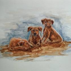 puppies, 16 x 12 inch, ram mohan e,paintings,animal paintings,paintings for living room,paintings for office,paintings for kids room,paintings for school,brustro watercolor paper,watercolor,16x12inch,GAL069717062