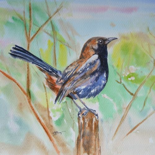 birds, 15 x 11 inch, ram mohan e,paintings,wildlife paintings,nature paintings,animal paintings,paintings for living room,paintings for kids room,paintings for school,fabriano sheet,watercolor,15x11inch,GAL069717147Nature,environment,Beauty,scenery,greenery