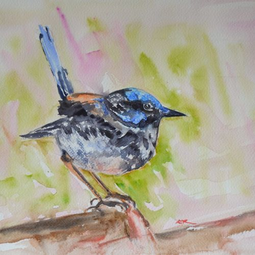 birds, 15 x 11 inch, ram mohan e,paintings,wildlife paintings,nature paintings,animal paintings,paintings for living room,paintings for kids room,paintings for school,fabriano sheet,watercolor,15x11inch,GAL069717149Nature,environment,Beauty,scenery,greenery