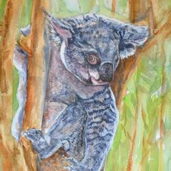 koala, 11 x 15 inch, ram mohan e,paintings,wildlife paintings,nature paintings,animal paintings,paintings for living room,paintings for kids room,paintings for school,paintings for living room,paintings for kids room,paintings for school,fabriano sheet,watercolor,11x15inch,GAL069717152Nature,environment,Beauty,scenery,greenery