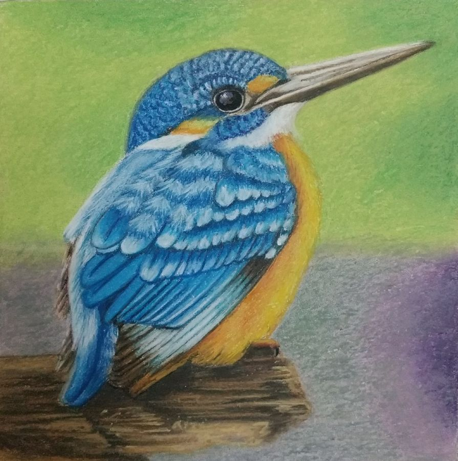 bird , 12 x 12 inch, geetha kanchi ,paintings,still life paintings,animal paintings,realistic paintings,baby paintings,paintings for dining room,paintings for living room,paintings for bedroom,paintings for office,paintings for kids room,paintings for hotel,paintings for school,paintings for hospital,paintings for dining room,paintings for living room,paintings for bedroom,paintings for office,paintings for kids room,paintings for hotel,paintings for school,paintings for hospital,wildlife paintings,nature paintings,art deco paintings,love paintings,children paintings,kids paintings,canvas board,pastel color,12x12inch,GAL0793517253Nature,environment,Beauty,scenery,greenery