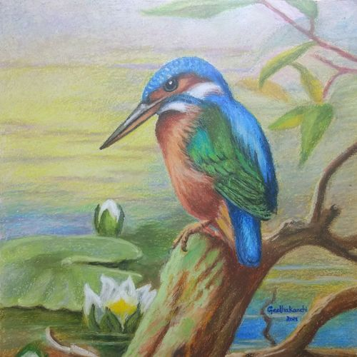bird, 12 x 12 inch, geetha kanchi ,paintings,wildlife paintings,flower paintings,nature paintings,animal paintings,realistic paintings,paintings for dining room,paintings for living room,paintings for office,paintings for kids room,paintings for hotel,paintings for school,paintings for hospital,canvas board,pastel color,12x12inch,GAL0793517255Nature,environment,Beauty,scenery,greenery,water,beautiful,birds,flowers