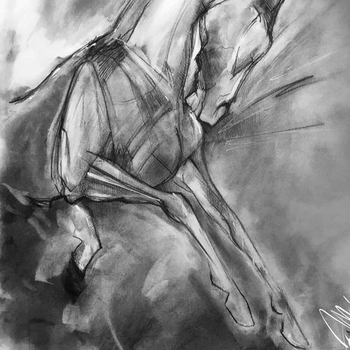horses i, 17 x 11 inch, joydeep mitra,drawings,abstract expressionist drawings,expressionist drawings,fine art drawings,impressionist drawings,modern drawings,paintings for living room,paintings for office,fabriano sheet,charcoal,pen color,photo ink,graphite pencil,17x11inch,GAL0768317329