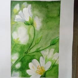 white flowers, 12 x 17 inch, deepti agrawal,paintings,flower paintings,nature paintings,paintings for bedroom,paintings for office,paintings for hotel,paintings for school,paintings for hospital,cartridge paper,watercolor,12x17inch,GAL0596817422Nature,environment,Beauty,scenery,greenery