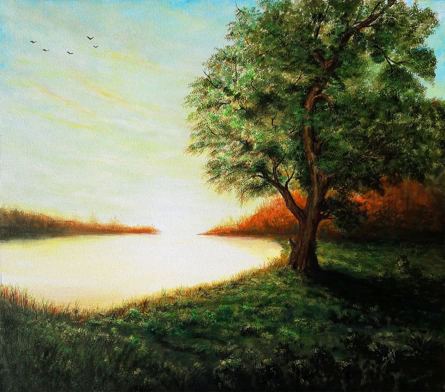energy, 38 x 36 inch, seby augustine,paintings,landscape paintings,nature paintings,photorealism paintings,canvas,acrylic color,38x36inch,GAL015017786Nature,environment,Beauty,scenery,greenery,lake,trees,birds