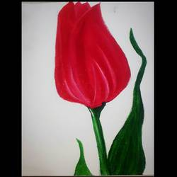 red tulip, 8 x 10 inch, praveena shree egambaram,paintings,flower paintings,still life paintings,nature paintings,photorealism,realism paintings,contemporary paintings,paintings for dining room,paintings for living room,paintings for bedroom,paintings for office,paintings for kids room,paintings for hotel,paintings for kitchen,paintings for school,paintings for hospital,canvas,oil,8x10inch,GAL0681417951Nature,environment,Beauty,scenery,greenery
