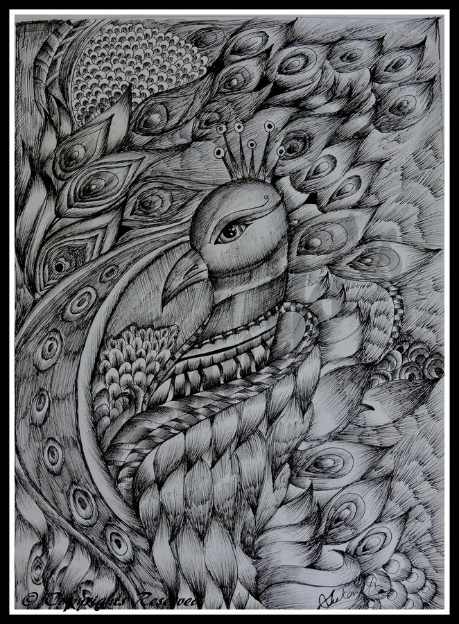 peacock, 12 x 16 inch, kanthi sukanthi,abstract drawings,paintings for bedroom,paper,ball point pen,12x16inch,GAL07241810