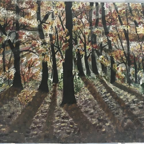 freshness of forest, 45 x 28 inch, ila  singh,paintings,landscape paintings,photorealism paintings,realism paintings,realistic paintings,paintings for living room,paintings for office,paintings for hotel,paintings for school,paintings for hospital,canvas,oil,45x28inch,GAL0795918215