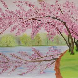 cherry blossoms, 22 x 15 inch, suchitra tata,paintings,flower paintings,nature paintings,paintings for dining room,paintings for living room,paintings for bedroom,paintings for office,paintings for hotel,paintings for dining room,paintings for living room,paintings for bedroom,paintings for office,paintings for hotel,canvas,oil,22x15inch,GAL0288618420Nature,environment,Beauty,scenery,greenery