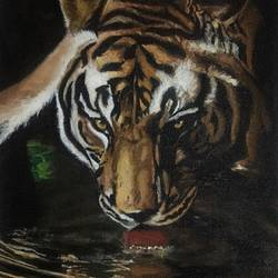 thirsty tiger , 9 x 12 inch, simon  fernando,wildlife paintings,paintings for living room,canvas,acrylic color,9x12inch,GAL07351844