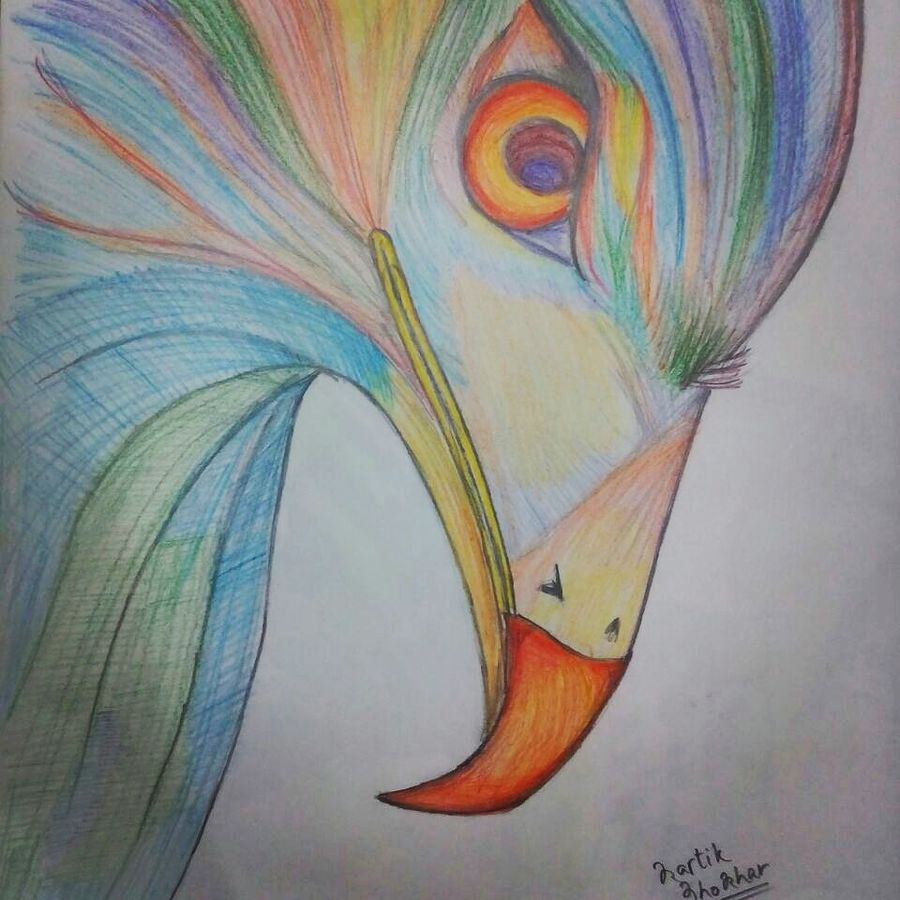 the eye of the eagle, 12 x 16 inch, kartik khokhar,fine art drawings,paintings for living room,paper,pencil color,12x16inch,GAL07381850