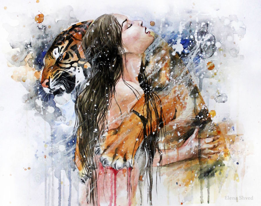 Love of tiger