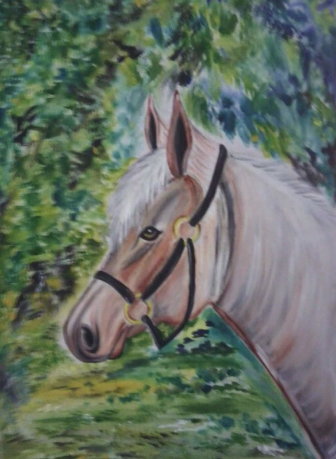 white horse, 18 x 20 inch, ankita mandal,wildlife paintings,paintings for bedroom,animal paintings,horse paintings,canvas,oil,18x20inch,GAL07451886