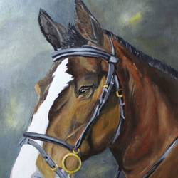horse portrait, 16 x 20 inch, subhash gijare,paintings,wildlife paintings,animal paintings,paintings for dining room,paintings for living room,paintings for office,paintings for kids room,paintings for hotel,paintings for school,paintings for hospital,canvas,acrylic color,oil,16x20inch,GAL013818982
