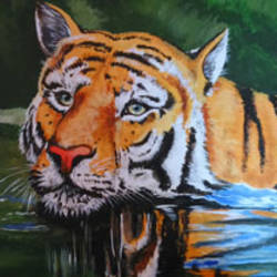 tiger - acrylic painting , 12 x 16 inch, abhilash  vijayakumar ,paintings,animal paintings,canvas board,acrylic color,12x16inch,GAL0930119008