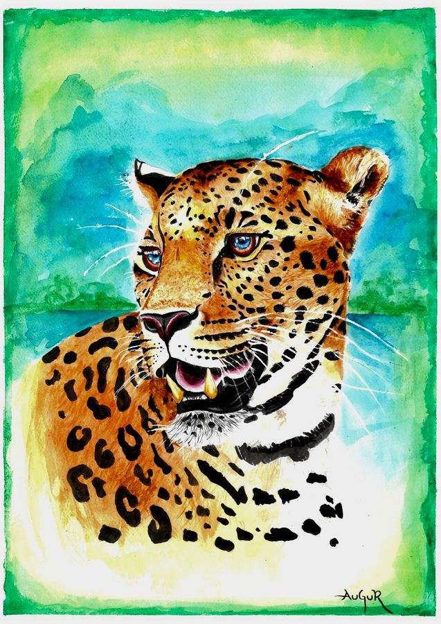 leopard-watercolor , 12 x 17 inch, augur art gallery,wildlife paintings,animal paintings,canson paper,watercolor,12x17inch,GAL0935819030