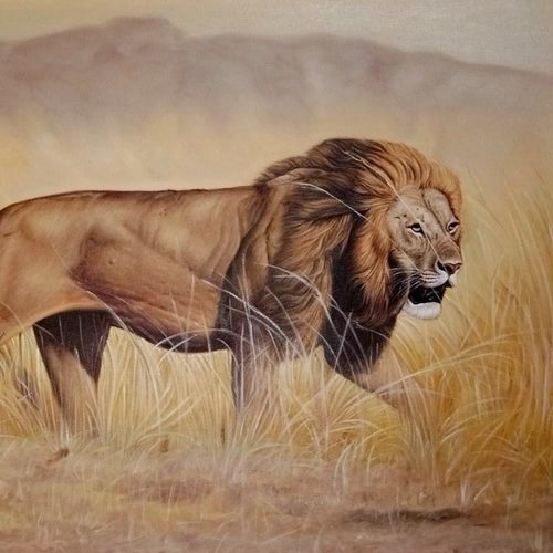 narshima 24 x 26 inch by ajay singh peelwa,24x26inch,lion,king of forest,GAL0937819068