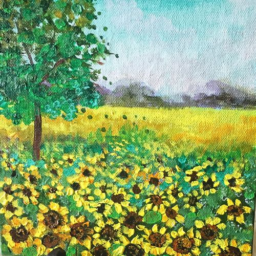 sunflower feilds, 8 x 8 inch, supriya sathe,flower paintings,landscape paintings,nature paintings,impressionist paintings,paintings for dining room,paintings for living room,paintings for bedroom,paintings for office,paintings for bathroom,paintings for kids room,paintings for hotel,paintings for kitchen,paintings for school,paintings for hospital,canvas,acrylic color,8x8inch,GAL0938519132Nature,environment,Beauty,scenery,greenery